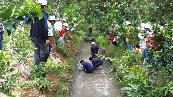 Khu du lịch Cồn Thới Sơn ở Tiền Giang