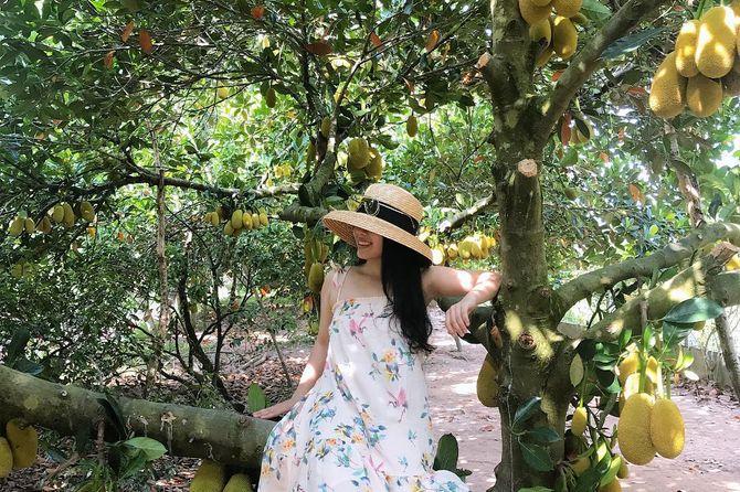 Vườn trái cây Bảo Thạch Bến Tre